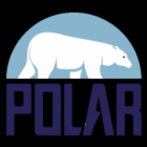 cp skihelm distributeur - polar import